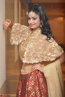 Mehek in Designer Ethnic Crop Top and Skirt Stunning Pics March 2017 048.JPG