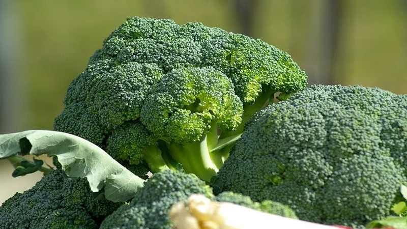 Foods That Are Straight-Up Superfoods