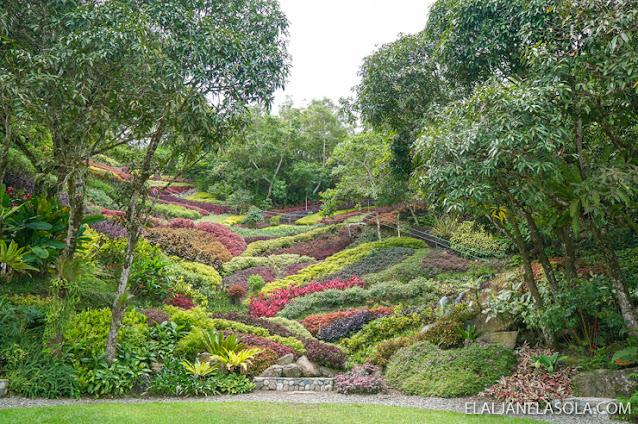 Lakeview Le Jardin