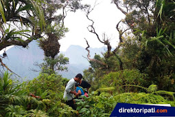 Jelajah Puncak Termulus, Dunia Fantasinya Pati Mirip Jurassic Park