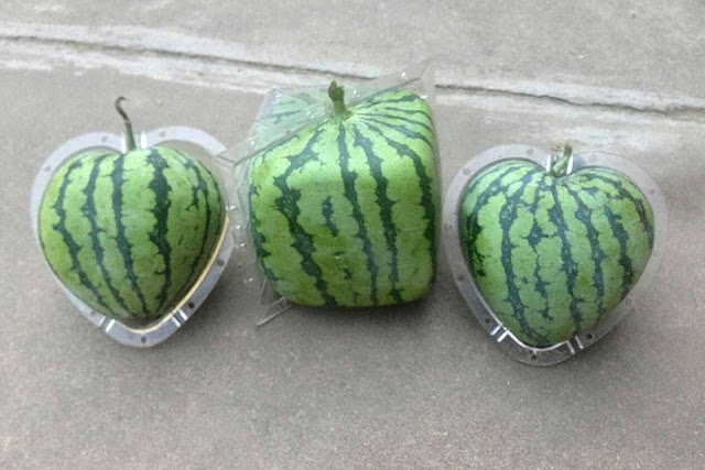 Овощной кубизм и прочие штучки, Необычные и удивительные овощи и фрукты