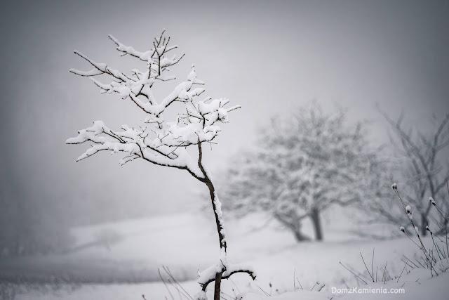Biforco, Dom z Kamienia blog - zima w Toskanii
