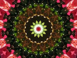 flower rangoli design simple and easy