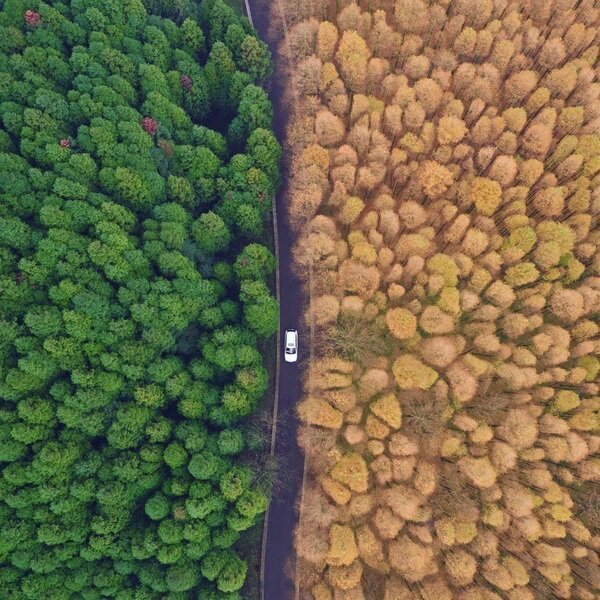 20 amazing photos depicting the contrasts of our planet