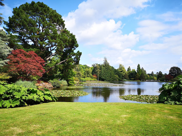 lake view at Sheffield park