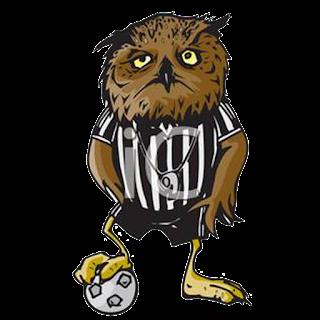 Logo DLS 2017 maskot burung hantu