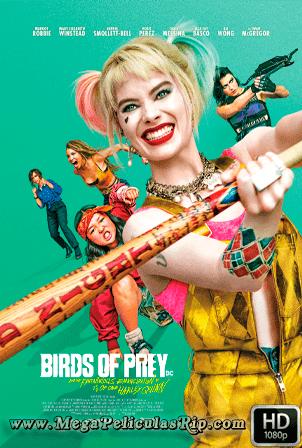 Aves De Presa 1080p Latino