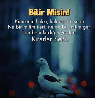 özlü sözler, güzel sözler, günün sözü, anlamlı sözler, ağır sözler, atarlı sözler, güvercin