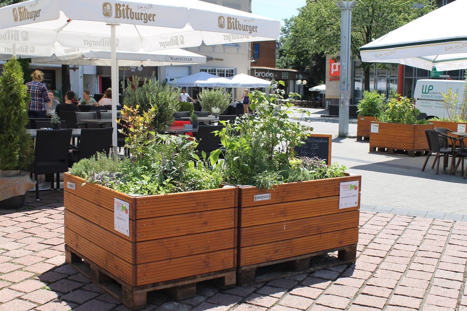Hochbeete In Trier Hochbeet Standorte