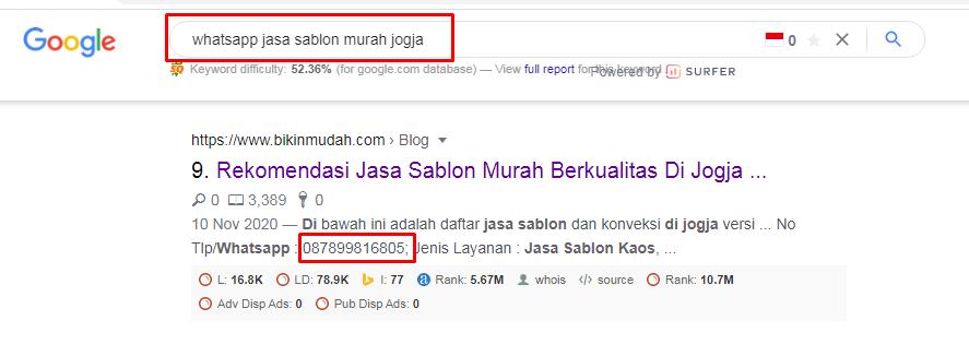 Cari Nomer Whatsapp Dengan Google