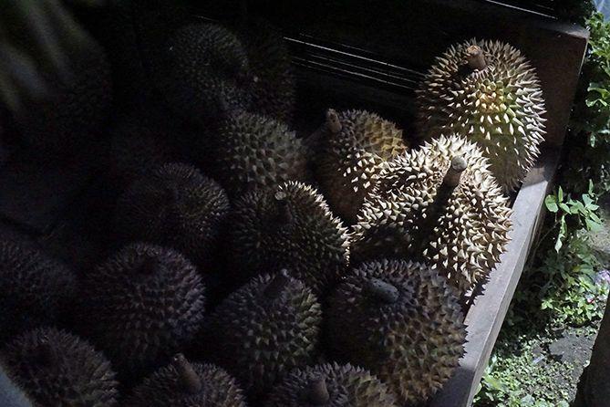 Tumpukan durian yang dijual