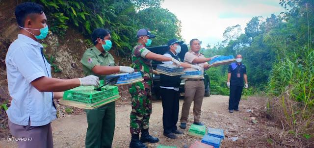 215 Ekor Burung Kacer Dari Malaysia Diamankan Satgas Yonmek 643 Di Sekayam