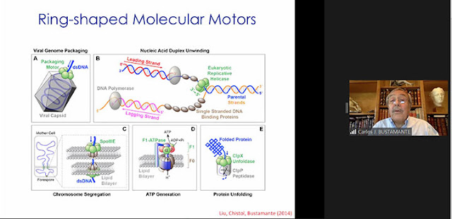 Insertion of DNA/RNA into viral capsids (Source: Carlos Bustamante, UCB, at APS Far West 2020 meeting)
