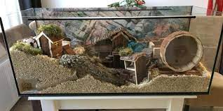 Kandang Hamster Aquarium