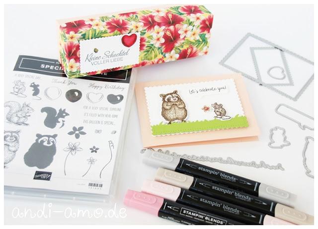 Box und Karte selbstgemacht Stampin Up Special Someone