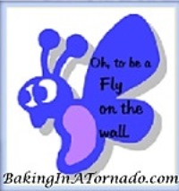 Fly on the Wall | BakingInATornado.com | #MyGraphics #humor