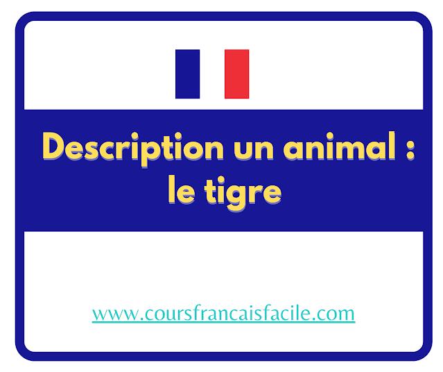 Description un animal : le tigre