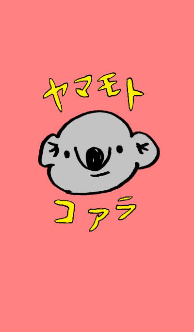 Yamamoto Koala