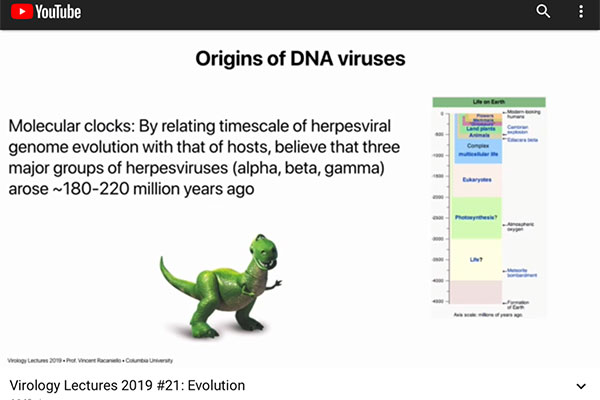 Molecular clocks can trace the history of viruses (Source: Vincent Racaniello)