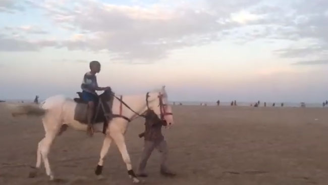 Horse Riding at Marina Beach