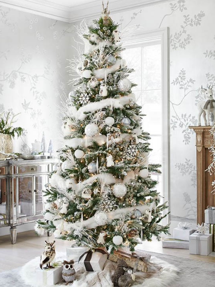 Christmas Tree Images
