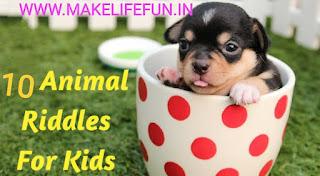 20 Animal riddles for kid