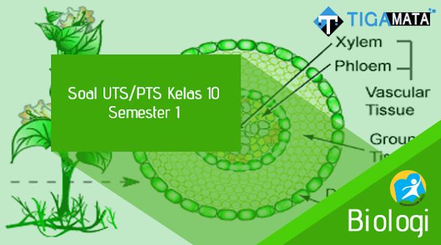 100 Contoh Soal UTS Biologi Kelas 10 Semester 1 Kurikulum 2013 dan Jawabannya