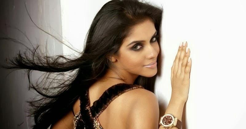 Asin Hd Wallpapers Asin Biography Bollywood Actress Photos: South Indian Actress Photos
