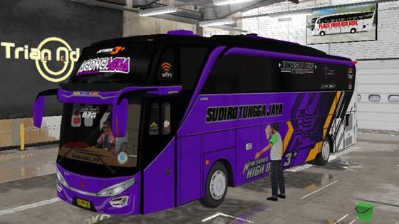 Livery Bussid STJ Aconcagua SHD Original