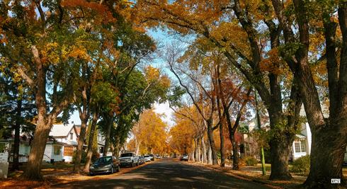 Medicine Hat Alberta Autumn Fall Pictures