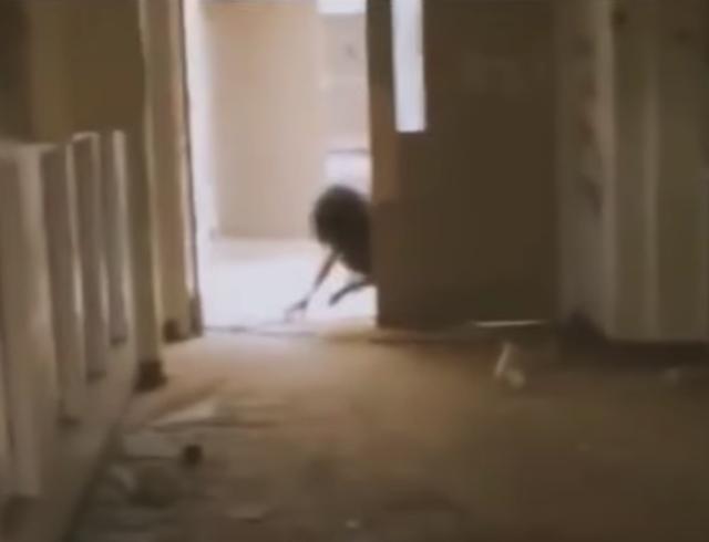 """""""Video"""" Bruja es grabada en una escuela abandonada"""