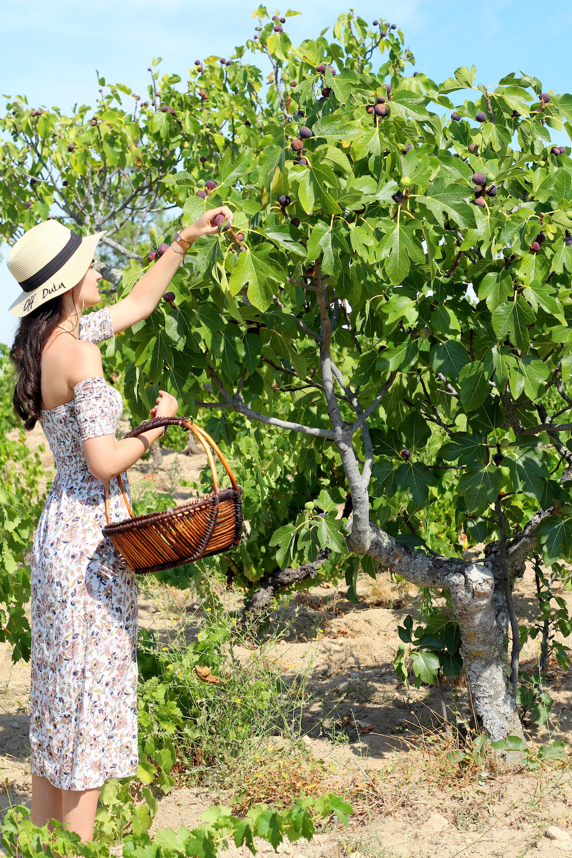 peexo travel blogger portugal