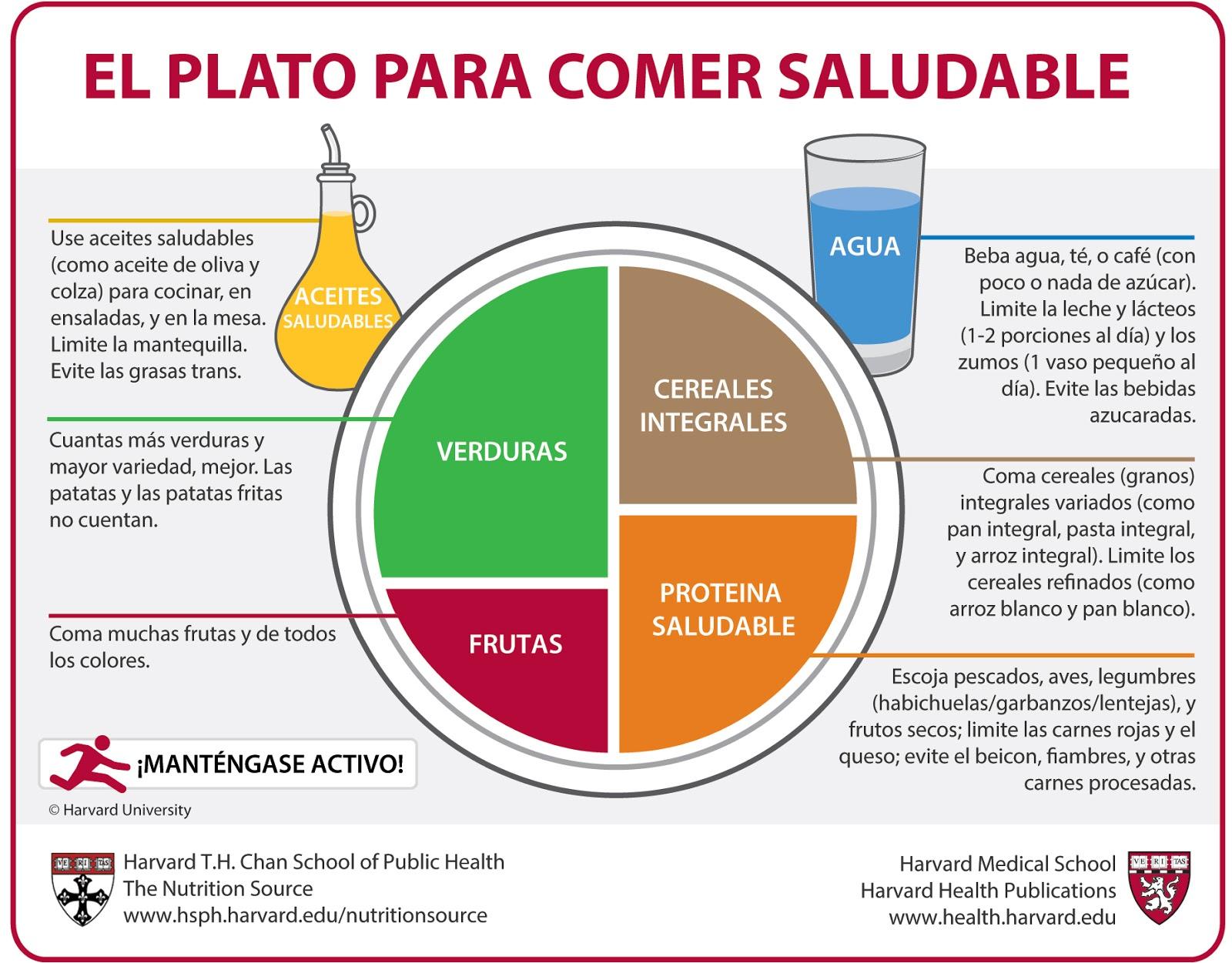 plato-saludable-hardvard-priamide-alimentaria.jpg