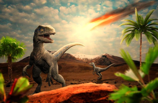 What probably Happened after the meteorite that caused the extinction of the dinosaurs living on earth, hit the ground?