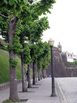 rua e muralha e postes de iluminação