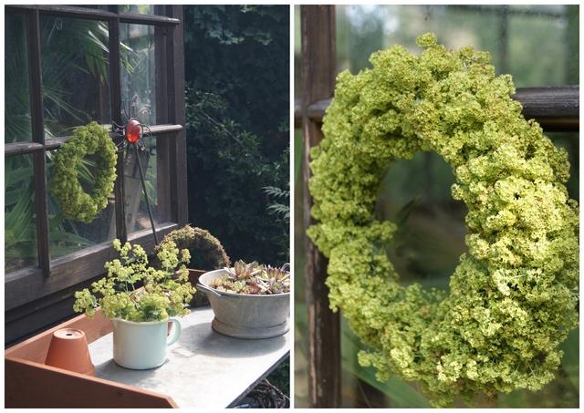 Sommerlicher Kranz aus Frauenmantel am Gartenhaus