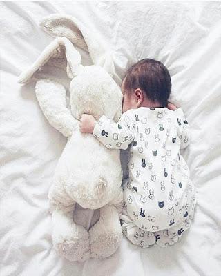 bebe con conejo de peluche acostados