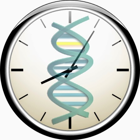 Genetic clocks disagree with evolution