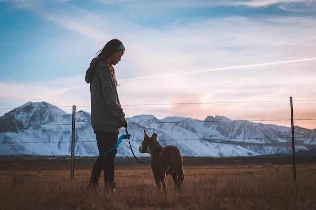 Mujer sufre amputación de brazos y piernas por bacteria en saliva de su perro