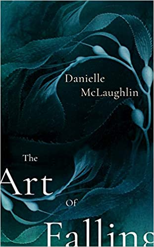 January reads - The art of falling by Danielle McLaughlin