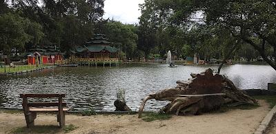 Swan Pond, Jipiro Park, Loja Ecuador