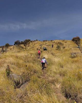 foto jalur pendakian gunung sindoro via kledung
