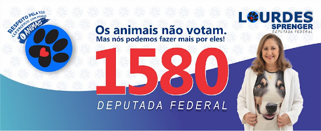 Lourdes 1580 Deputada Federal RS