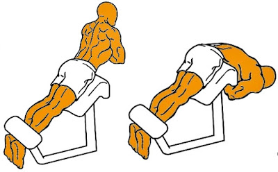 Dorsales ejercicio hombre rutina
