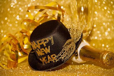 happy new year cats photos