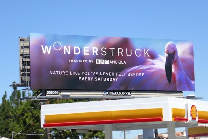 Pink flamingo Wonderstruck billboard