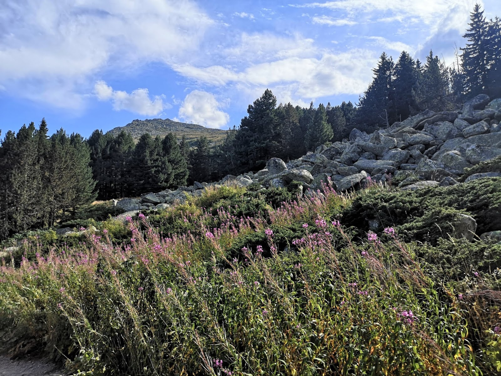 Bulgaria: Hiking Vitosha Mountain