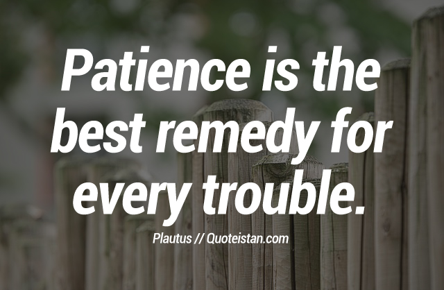 Patience is the best remedy for every trouble.
