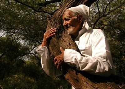 mencintai alam, mencintai lingkungan, memeluk pohon, gerakan chipko