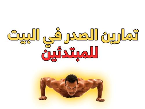 تمارين الصدر ,تمارين الصدر في البيت للمبتدئين ,تمارين الصدر العلوي ,تمارين الصدر السفلي,تمارين الخط الأوسط للصدر